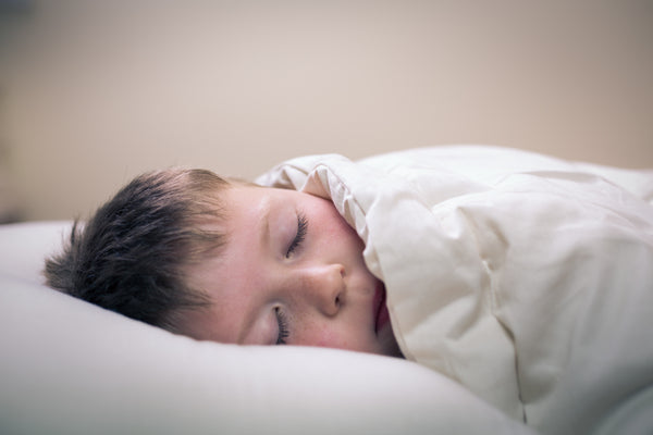 Our Brain On Sleep Blog By Resthouse Sleep Solutions Duncan BC Canada