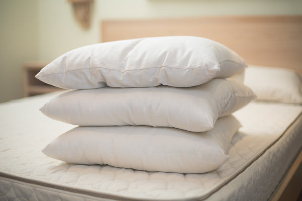Premium Eco-Wool™ Pillow by Holy Lamb Organics - Available at Resthouse Sleep Solutions, British Columbia, Canada