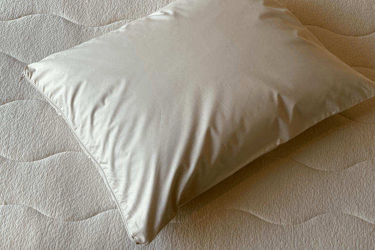 Keep your pillow free from allergy-inducing dust mite residues and other allergens.