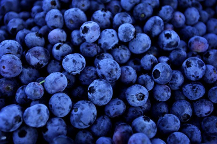 Blueberry (Wild) Dark Balsamic Vinegar