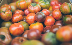 Tomatoes: Heritage or Hate?