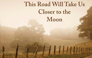 Review of This Road Will Take Us Closer to the Moon by Linda McCullough Moore