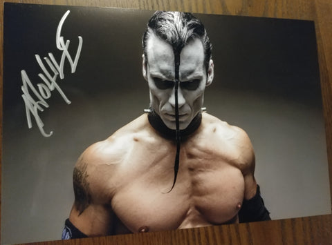 Doyle - Evil signed 8x12 (damaged)