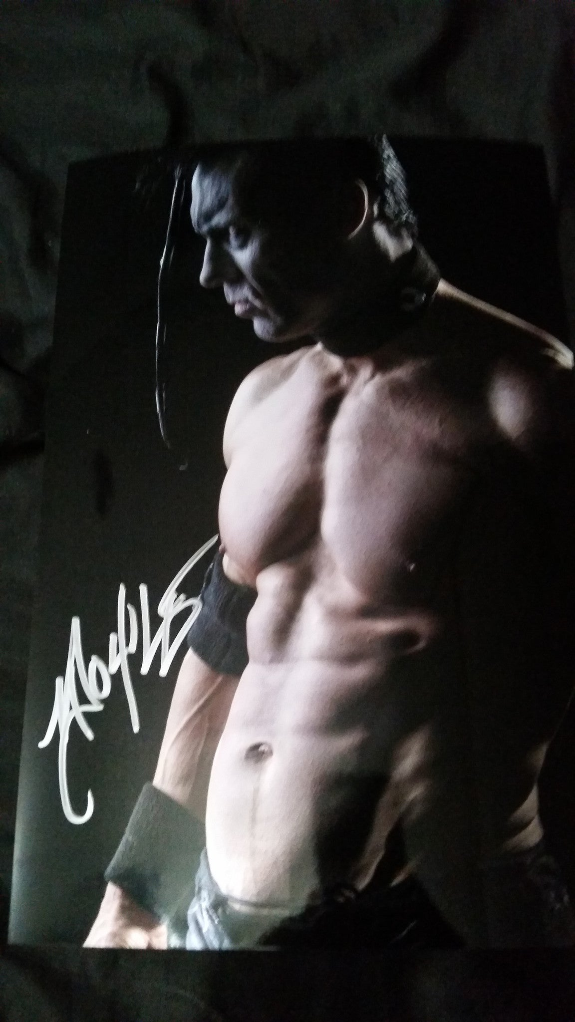 Doyle Wolfgang Von Frankenstein - Shadows - Signed limited edition metallic 8x12