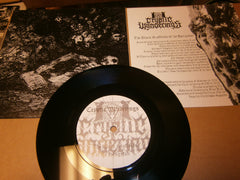 "CRYPTIC WANDERINGS / IN THE SHADES - 7"" Split EP Vinyl"