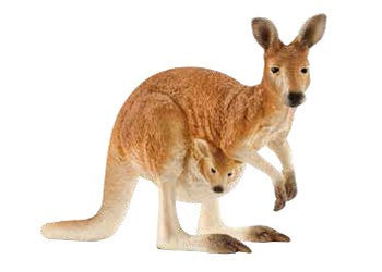 Schleich – Kangaroo Exclusive