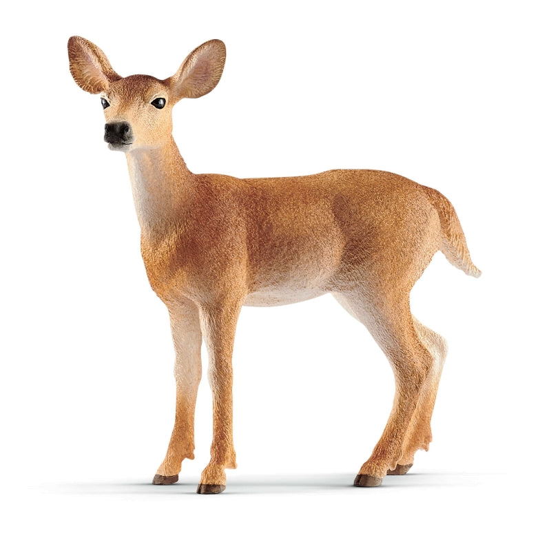Schleich - White Tailed Doe (14819) - Toot Toot Toys