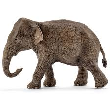 Schleich - Asian Elephant, Female - Toot Toot Toys