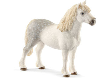 Schleich -Welsh Pony Stallion - Toot Toot Toys