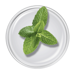 Epionce Purifying Wash from MyExceptionalSkinCare.com contains Spearmint