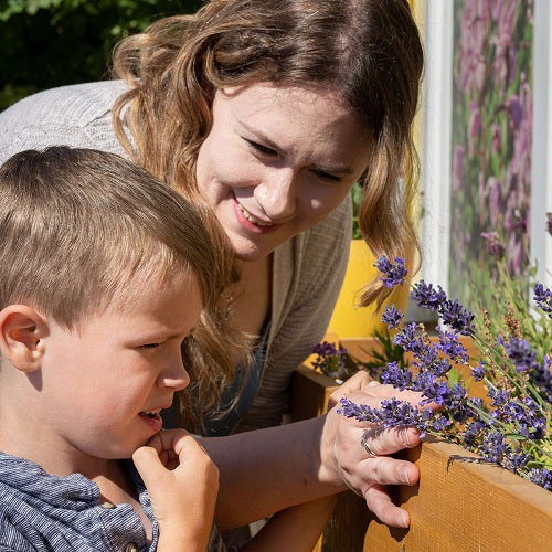 Enhanced Outdoor Learning Opportunities