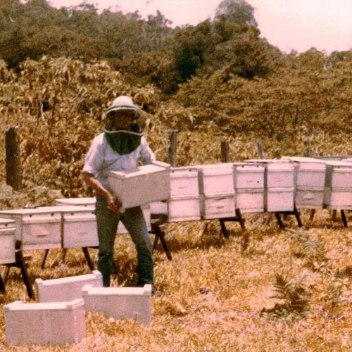 The Travelling Beekeeper