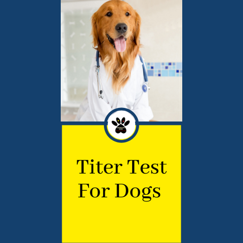 titer test for dogs