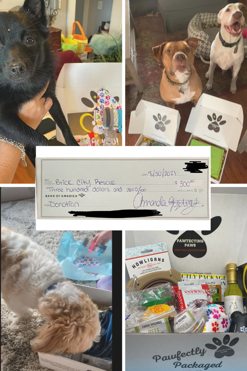brick city rescue donation to dog shelter in NJ