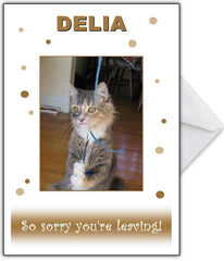 "Funny Leaving Card ""Such a Sad Kitty!"" - That Card Shop"