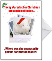 """This isn't a Rampant Rabbit?!"" Rude Christmas Card - That Card Shop"