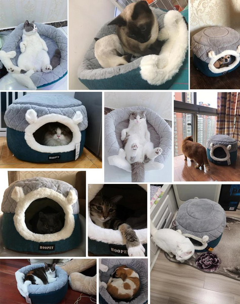 Cat Dog Cave Bed Customers