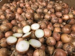 Brown Onion 20kg