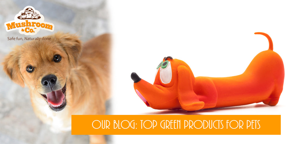 Organic Pet Toys | Green Toys for Pets | Organic Dog Chew Toys