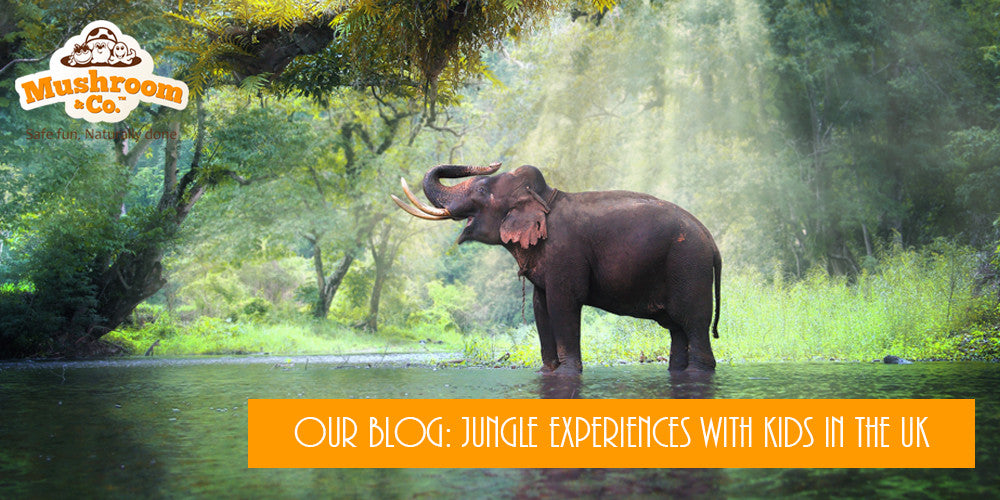 Jungle Experiences with Kids in the UK | Organic Toys | Jungle Toys