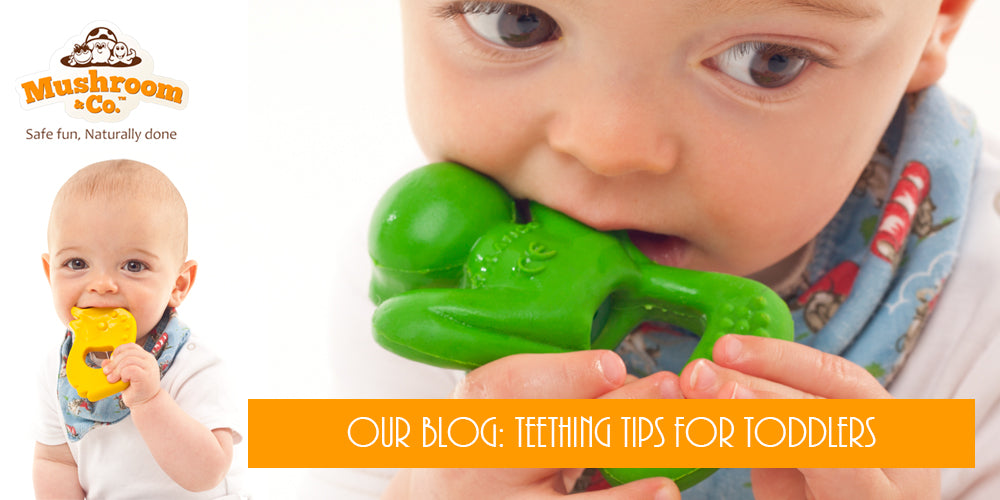 Teething Tips for Toddlers