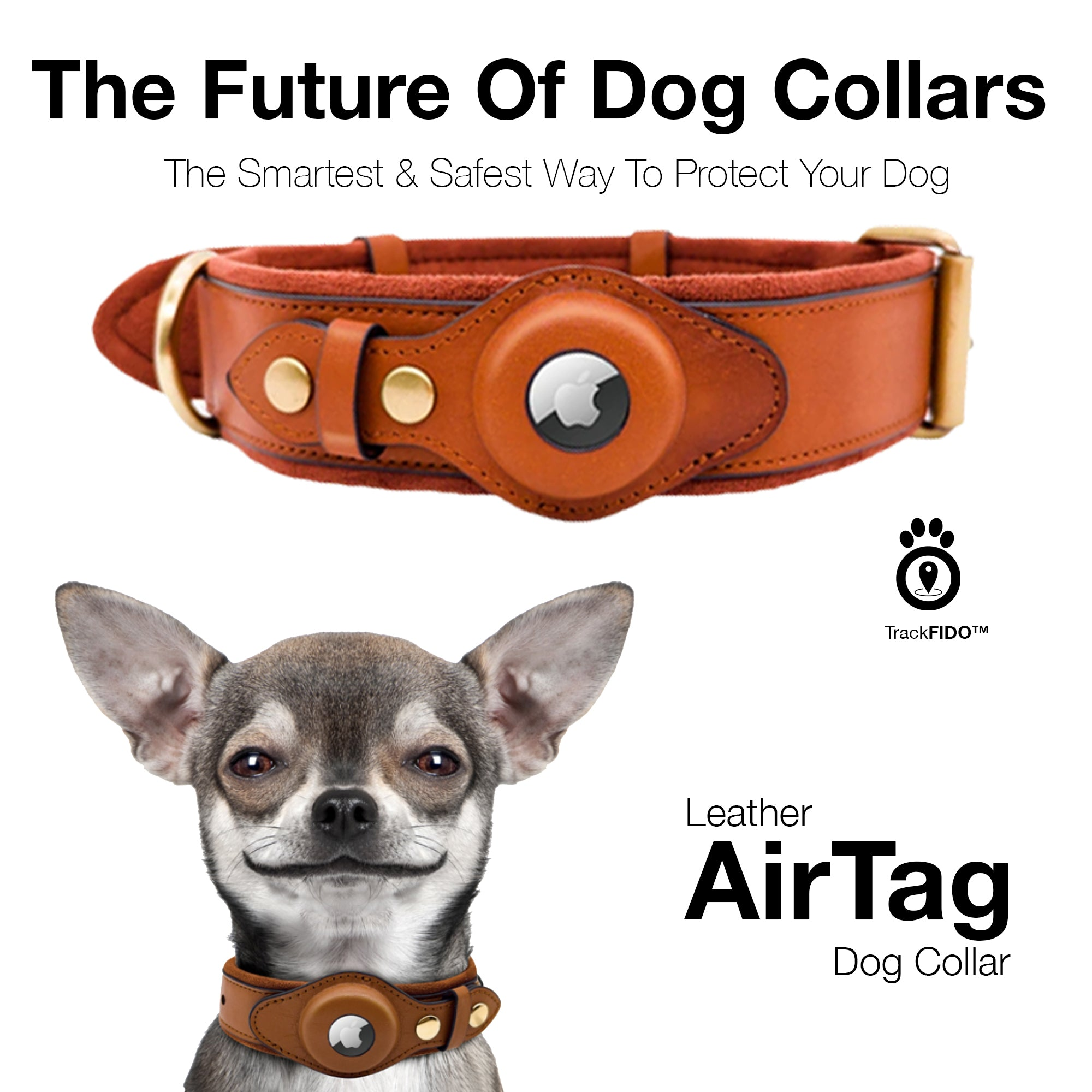 AirTag For Dogs