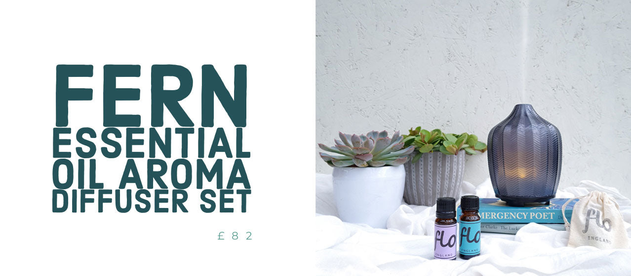 gifts for teacher - teachers gift - best essential oil aroma diffuser - made by zen - fern aroma diffuser