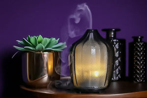 Fern Aroma Diffuser + Free essential oil blend