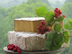 Meadow Creeek Appalachian Tomme-Style