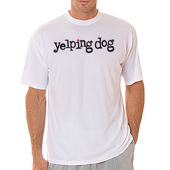 Cool And Dry Sport Tee Shirt