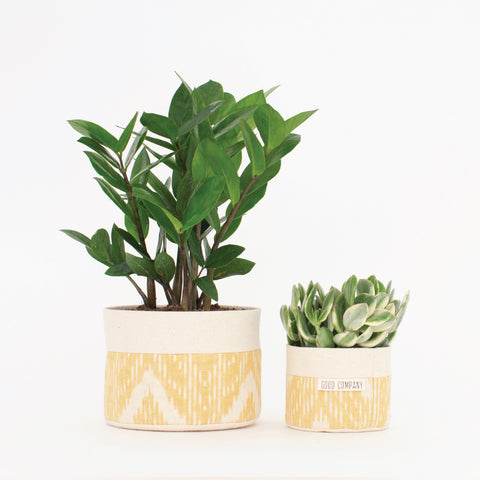 Medium Natural Canvas Sitting Planter | Marigold Ikat