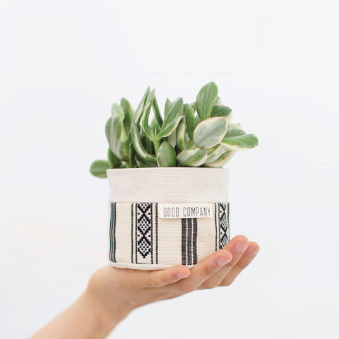 Small Natural Canvas Sitting Planter | Black + White