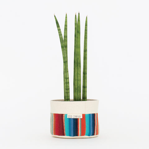 Medium Natural Canvas Sitting Planter | Red + Blue