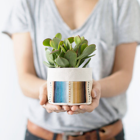 Small Natural Canvas Hanging Planter  |  Blue Stripe