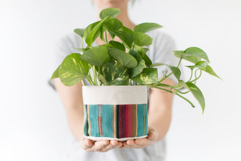 kitchen decoration canvas fabric planters