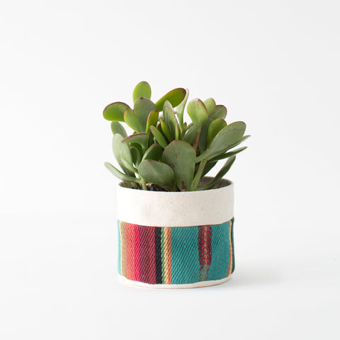 "4"" Natural Canvas Sitting Planter: Turquoise + Red"