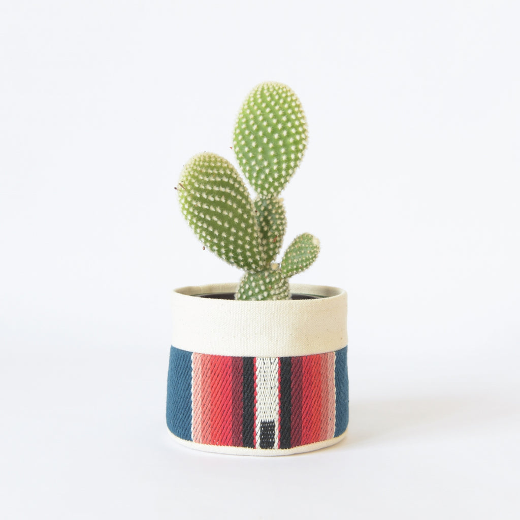 Small Natural Canvas Sitting Planter  |  Blue Stripe