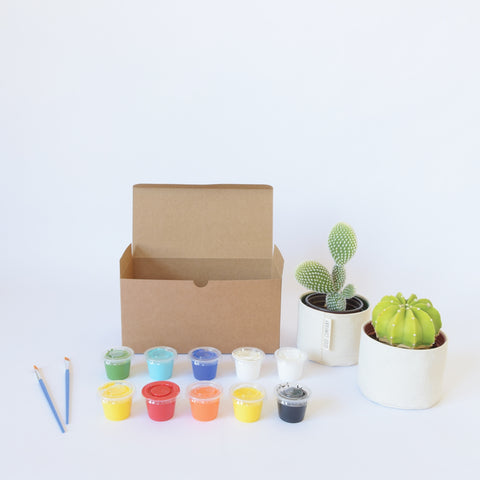 Blank Canvas Planter Box Set