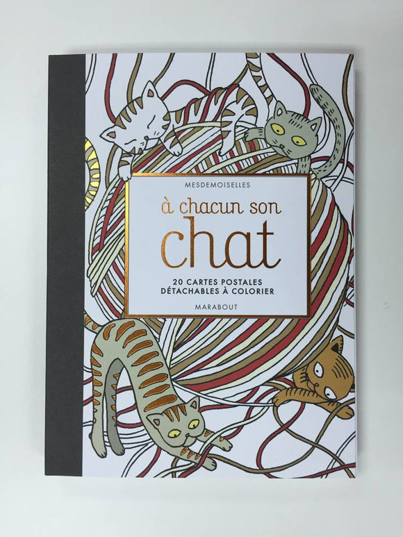 Cartes Postales A Chacun Son Chat