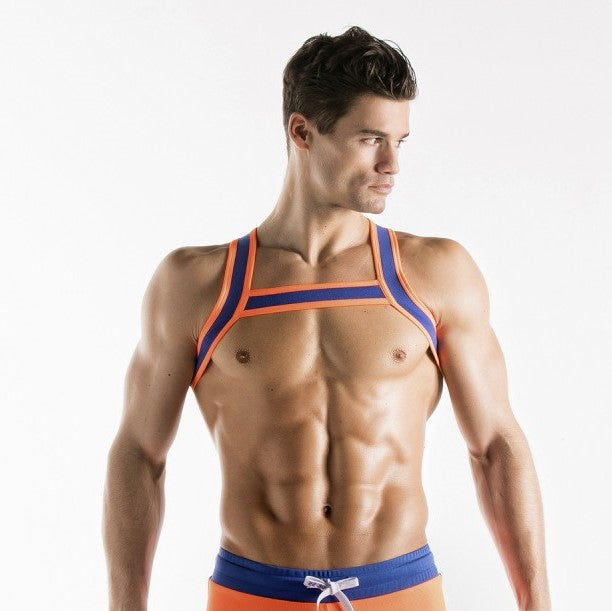 Code 22 harness 8004 blue/ orange