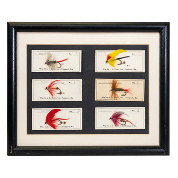 Sporting Goods  fishing, trout flies  Framed Trout Flies
