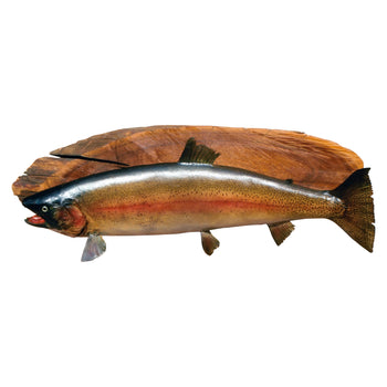 Lodge Furnishings  fish mounts, rainbow trout, taxidermy  Rainbow Trout
