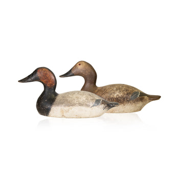 Sporting Goods  canvasbacks, duck decoys, evans, mammoth, waterfowl  Pair Mammoth Evans Canvasbacks