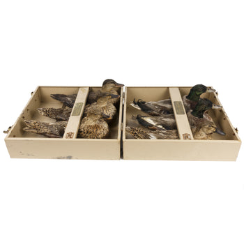 Sporting Goods  duck decoys, mallard, waterfowl, whistler brothers  Decoys Deluxe