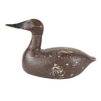 Sporting Goods  canvasbacks, duck decoys, hens  Canvasback Hen