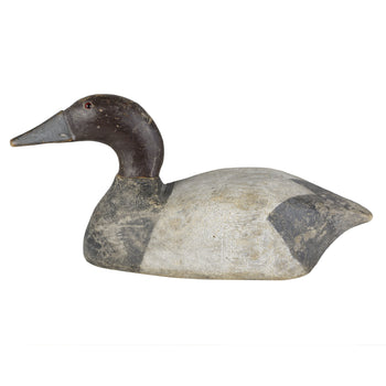 Sporting Goods  canvasbacks, duck decoys  Canvasback Drake