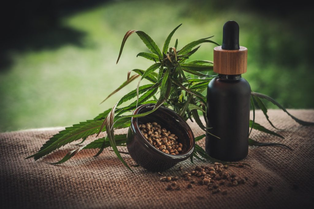 Using CBD oil for anxiety for humans can help ease normal levels of anxiety.