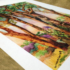 Aspens Watercolor Print