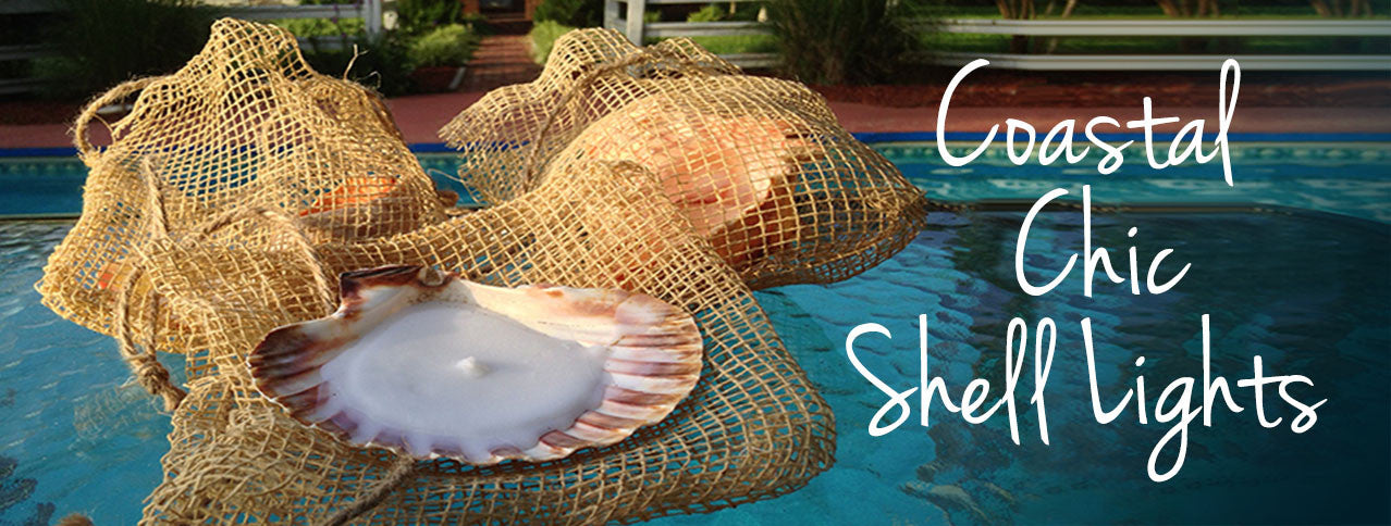 Looking for unique seashell candles?