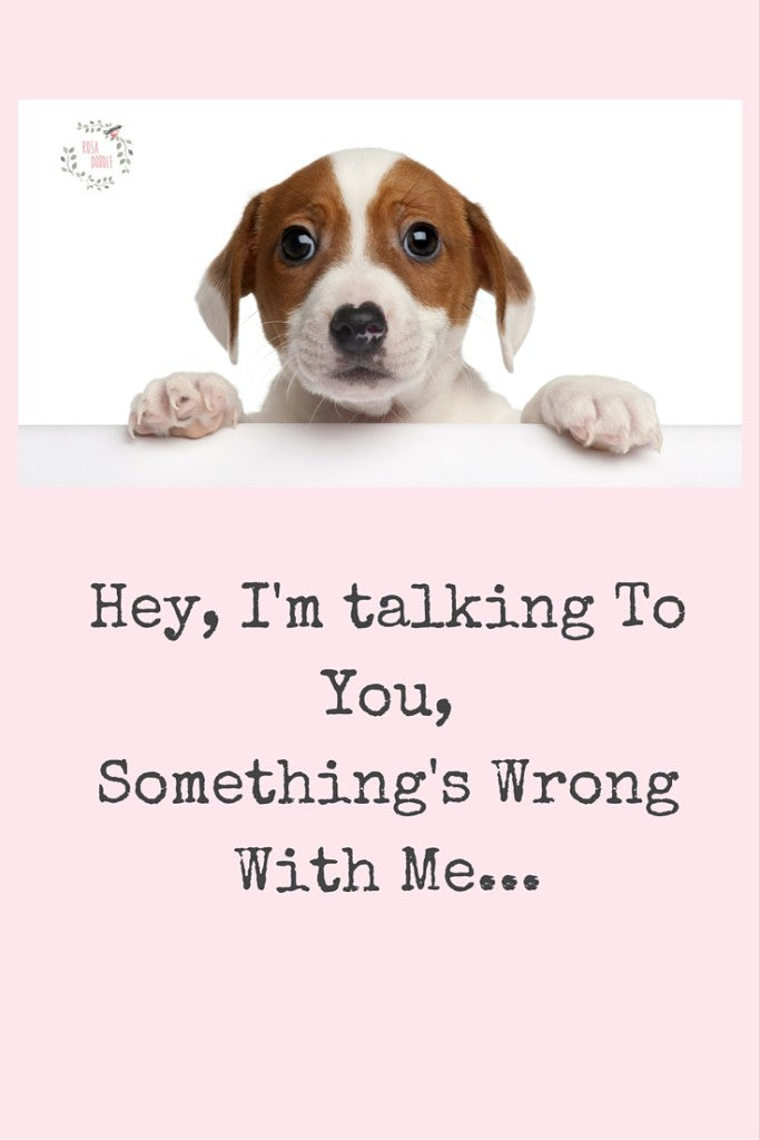 """Hey, I'm Talking To You. Something Is Wrong"" Love, Your Dog"